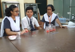 Summer camp at AECS 5, Mumbai in May 2018